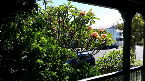 View from therapy room of Sarah Tuckett Psychotherapy and Counselling